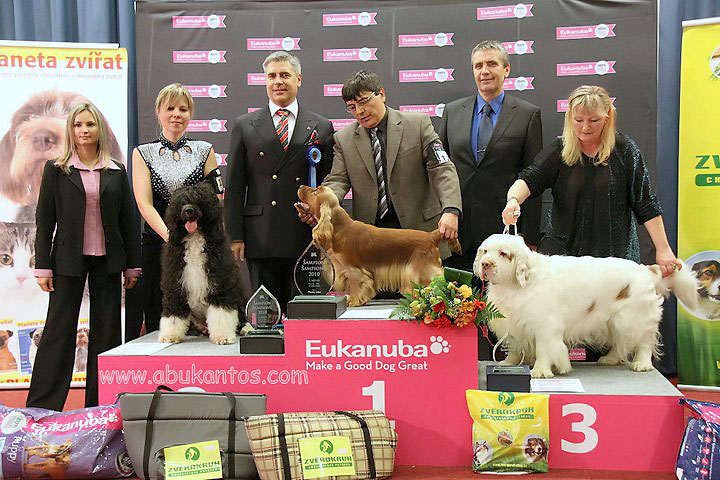 Champion of Champions 2010 Prague CZ - 3rd TOP DOG in CZ - FCI Gr.No. VIII., BOB